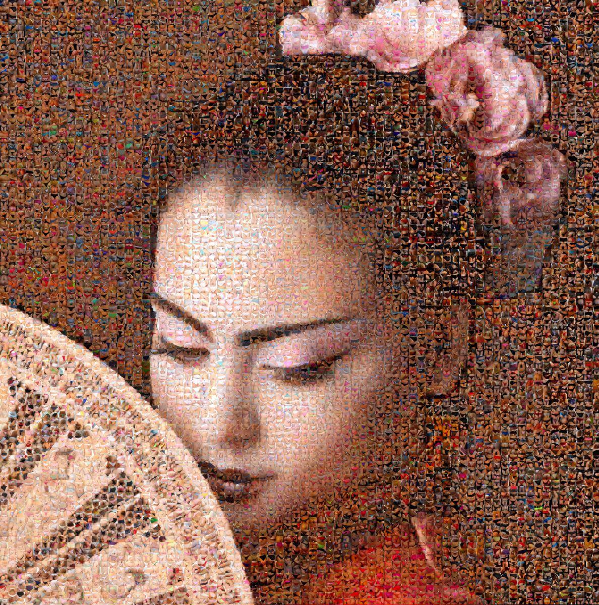 Geisha shy