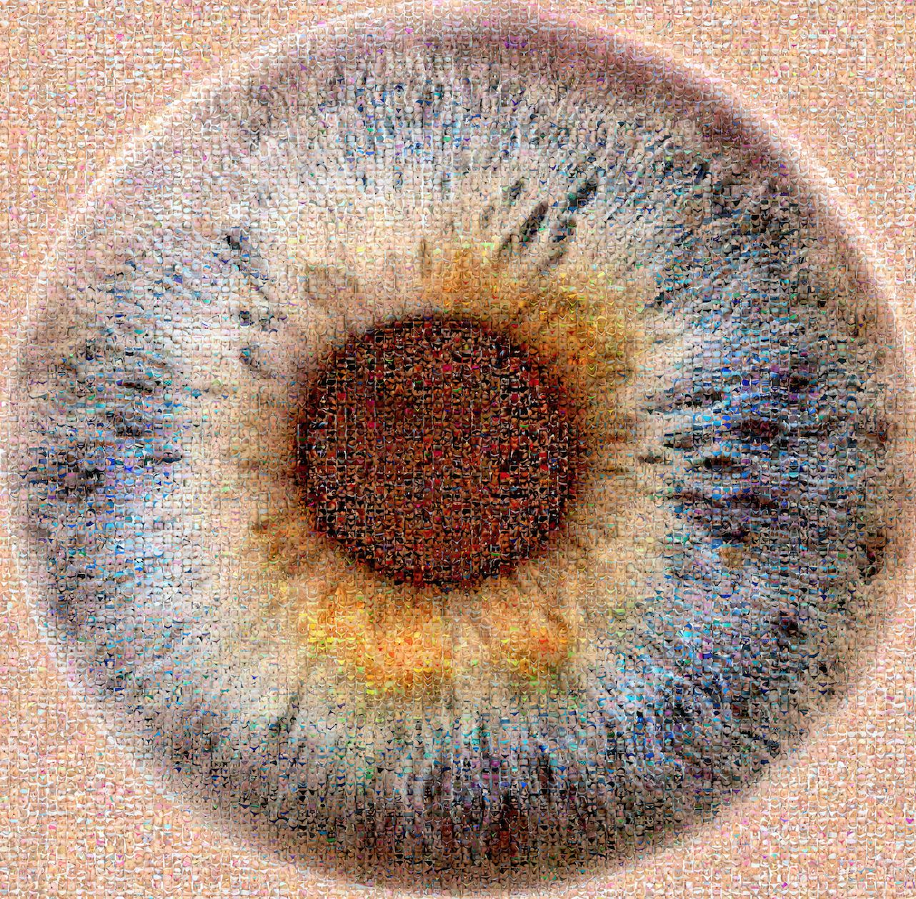 Photomosa que eye jo l moens de hase artiste belge contemporain - Design belge contemporain ...